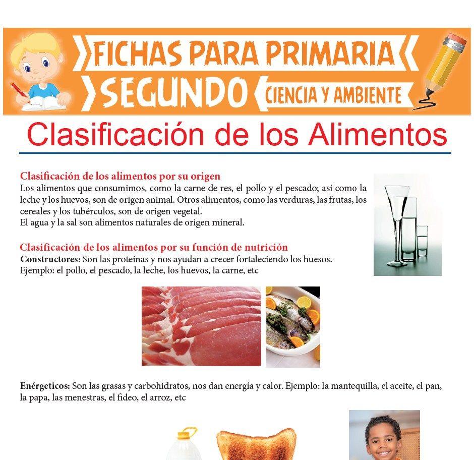 Ficha de Clasificación de Los Alimentos para Segundo de Primaria