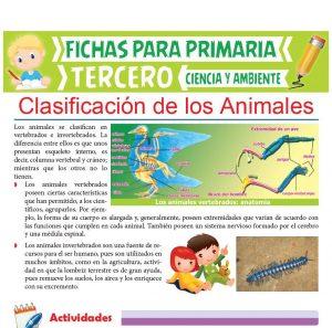 Ficha de Clasificación de los Animales para Tercer Grado de Primaria