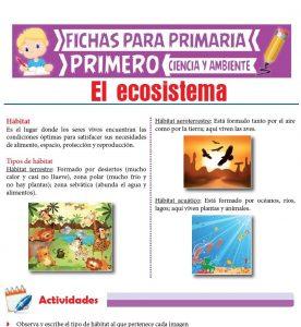 Ficha de El Ecosistema para Primero de Primaria