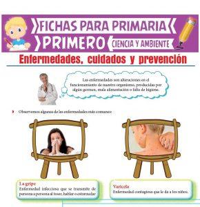Ficha de Enfermedades, cuidados y prevención para Primero de Primaria