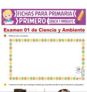 Evaluación de Ciencia y Ambiente para Primer Grado de Primaria