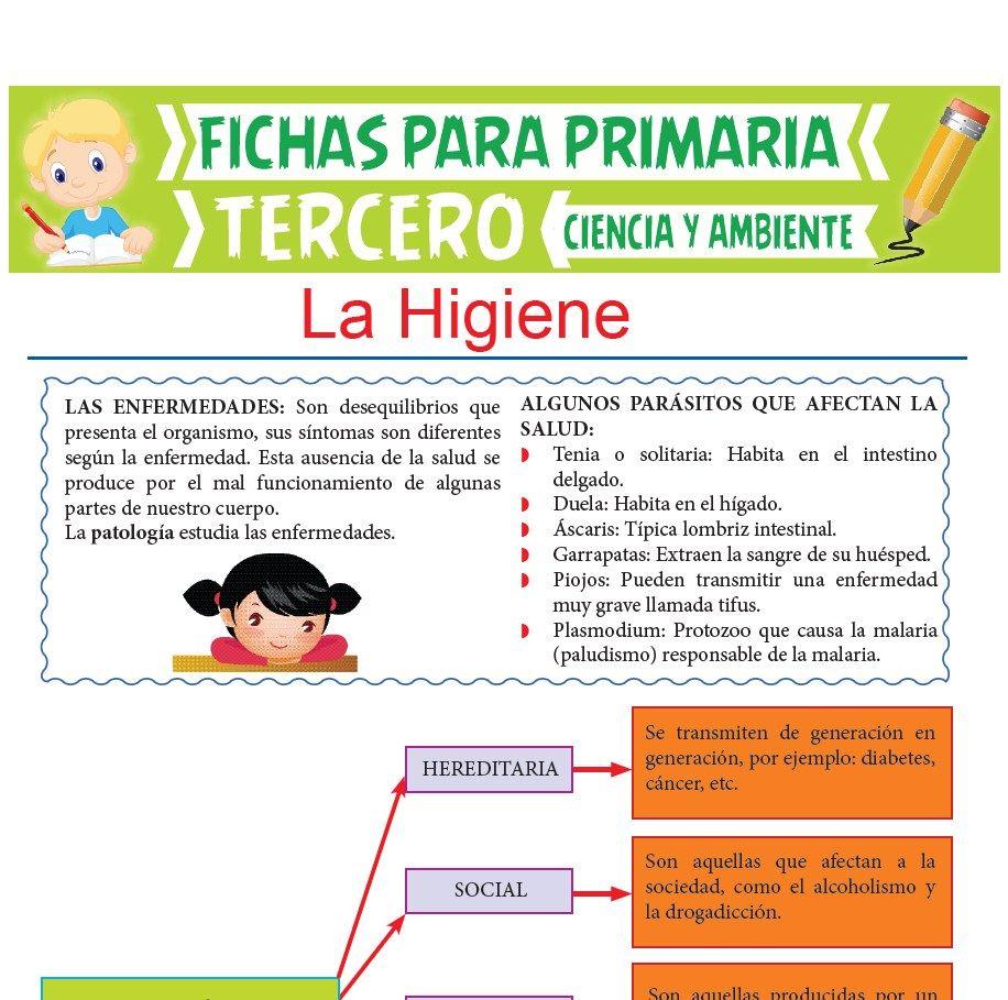 Ficha de La Higiene para Tercer Grado de Primaria