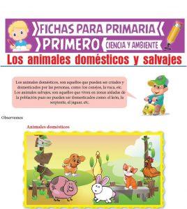 Ficha de Los Animales Domésticos y Salvajes para Primero de Primaria
