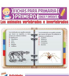 Ficha de Los Animales Vertebrados e Invertebrados para Primero de Primaria