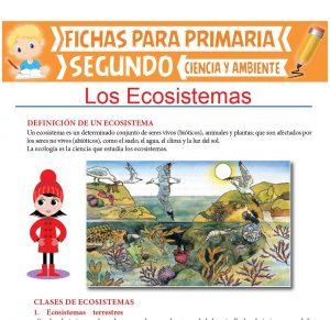 Ficha de Los Ecosistemas para Segundo de Primaria