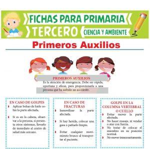 Ficha de Primeros Auxilios para Tercer Grado de Primaria