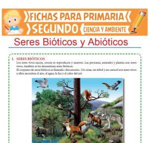 Ficha de Seres Bióticos y Abióticos para Segundo de Primaria