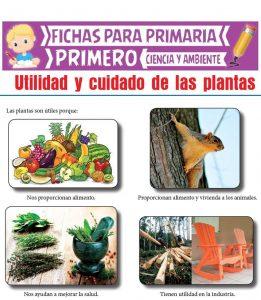 Ficha de Utilidad y Cuidado de las Plantas para Primero de Primaria