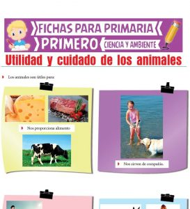 Ficha de Utilidad y Cuidado de los Animales para Primero de Primaria