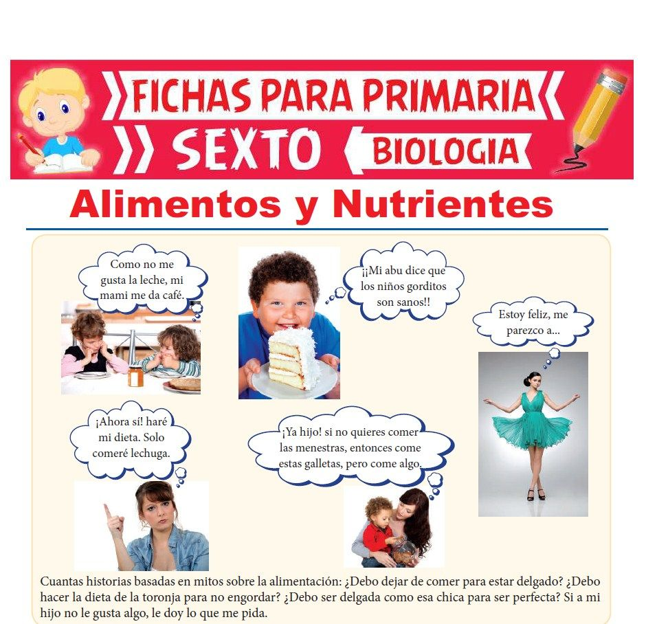 Ficha de Alimentos y Nutrientes para Sexto Grado de Primaria