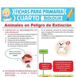 Ficha de Animales en Peligro de Extinción para Cuarto Grado de Primaria