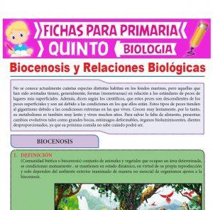Ficha de Biocenosis y Relaciones Biológicas para Quinto Grado de Primaria