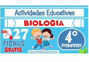27 fichas de Biología para Cuarto Grado de Primaria
