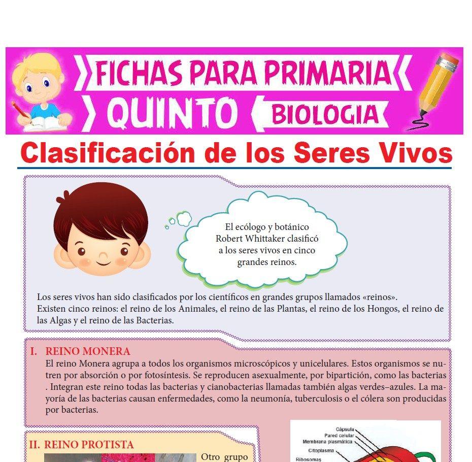 Ficha de Clasificación de Los Seres Vivos para Quinto Grado de Primaria