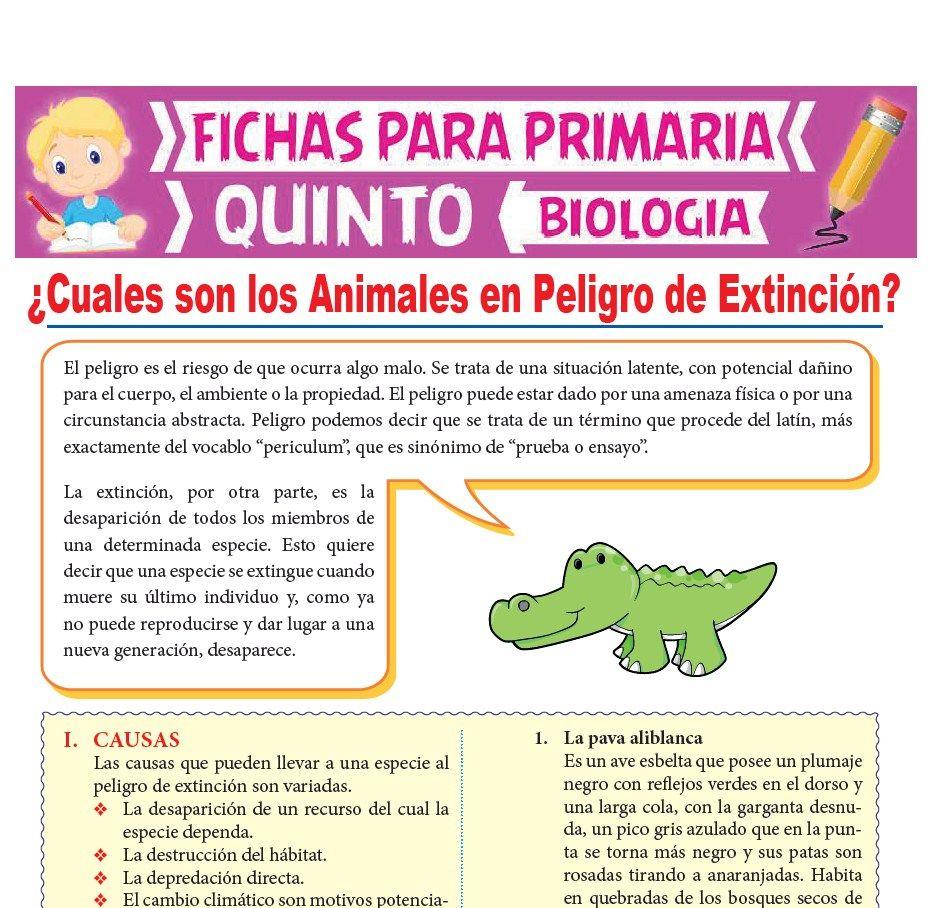 Ficha de Cuales son los Animales en Peligro de Extinción para Quinto Grado de Primaria