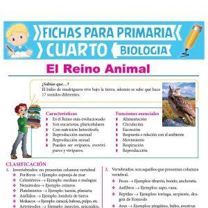 Ficha de El Reino Animal para Cuarto Grado de Primaria