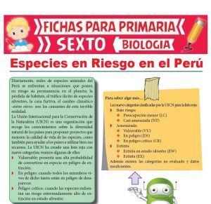 Ficha de Especies en Riesgo en el Perú para Sexto Grado de Primaria