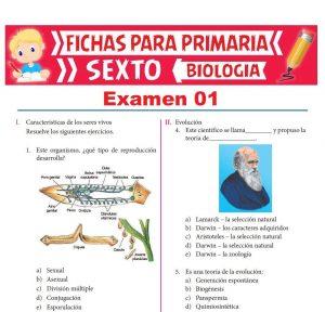 Ficha del Exámen Biología para Sexto Grado de Primaria