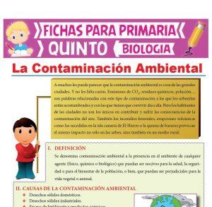 Ficha de La Contaminación Ambiental para Quinto Grado de Primaria