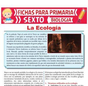 Ficha de La Ecología para Sexto Grado de Primaria