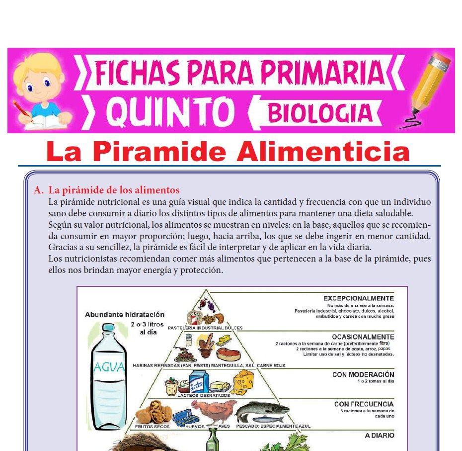 Ficha de La Piramide Alimenticia para Quinto Grado de Primaria
