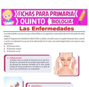 Ficha de Las Enfermedades para Quinto Grado de Primaria