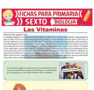 Ficha de Las Vitaminas para Sexto Grado de Primaria