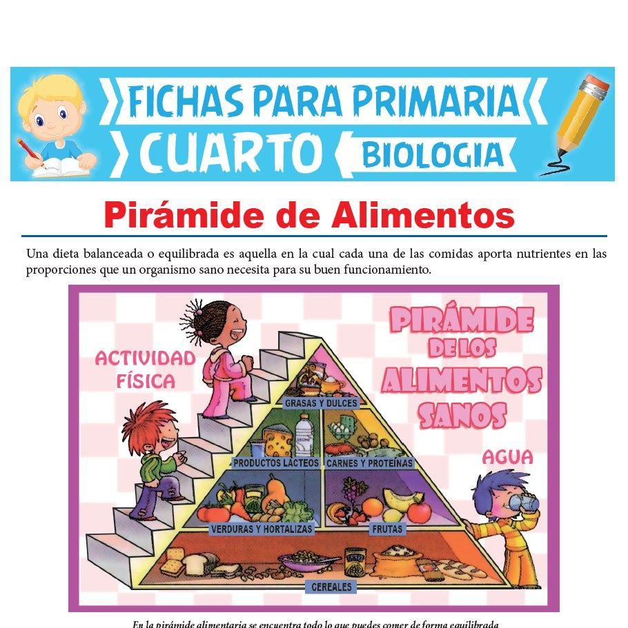 Ficha de Pirámide de Alimentos para Cuarto Grado de Primaria