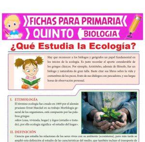 Ficha de Qué Estudia la Ecología para Quinto Grado de Primaria