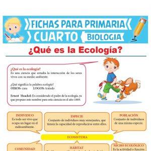 Ficha de Que es La Ecología para Cuarto Grado de Primaria