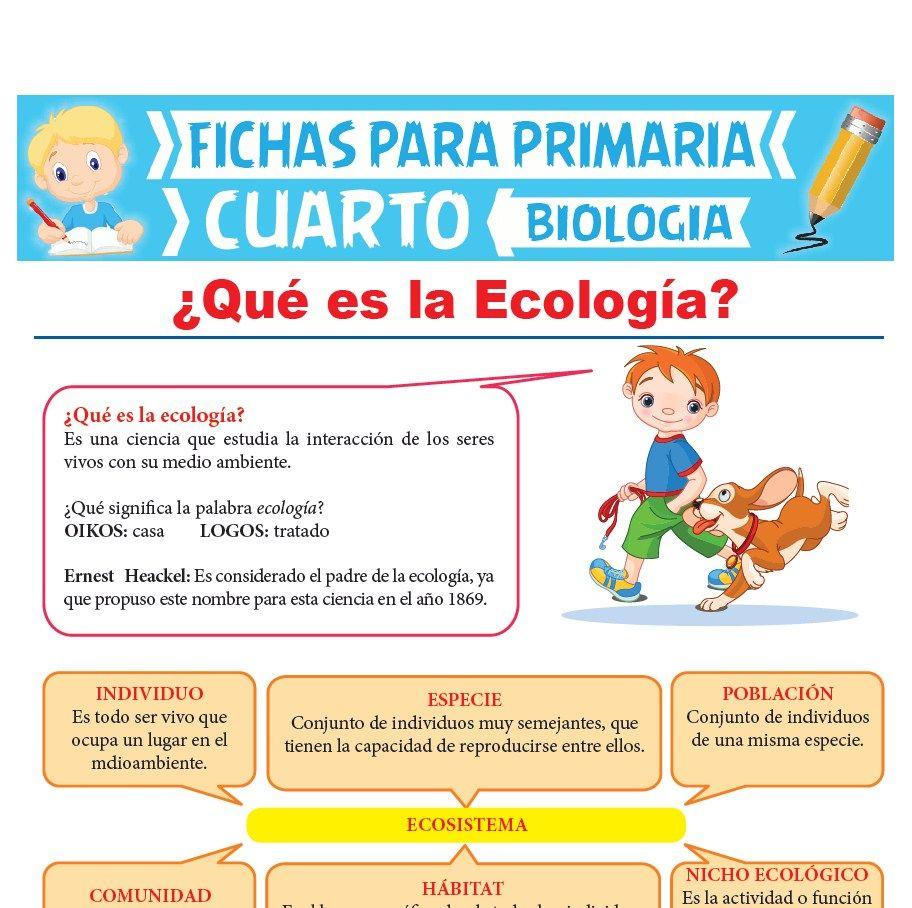 Que es La Ecología para Cuarto de Primaria | Actividades Educativas