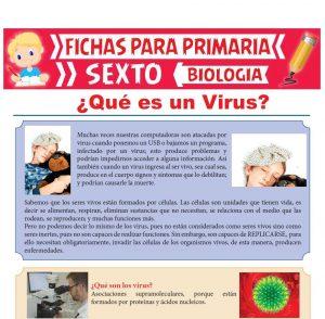 Ficha de Qué es un Virus para Sexto Grado de Primaria