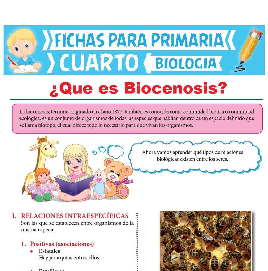 Ficha de Que es Biocenosis para Cuarto Grado de Primaria