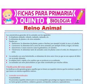 Ficha de Reino Animal para Quinto Grado de Primaria