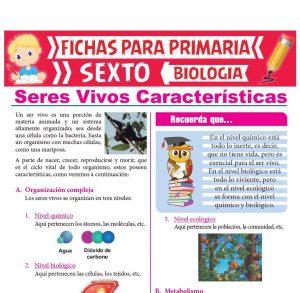 Ficha de Seres Vivos Características para Sexto Grado de Primaria