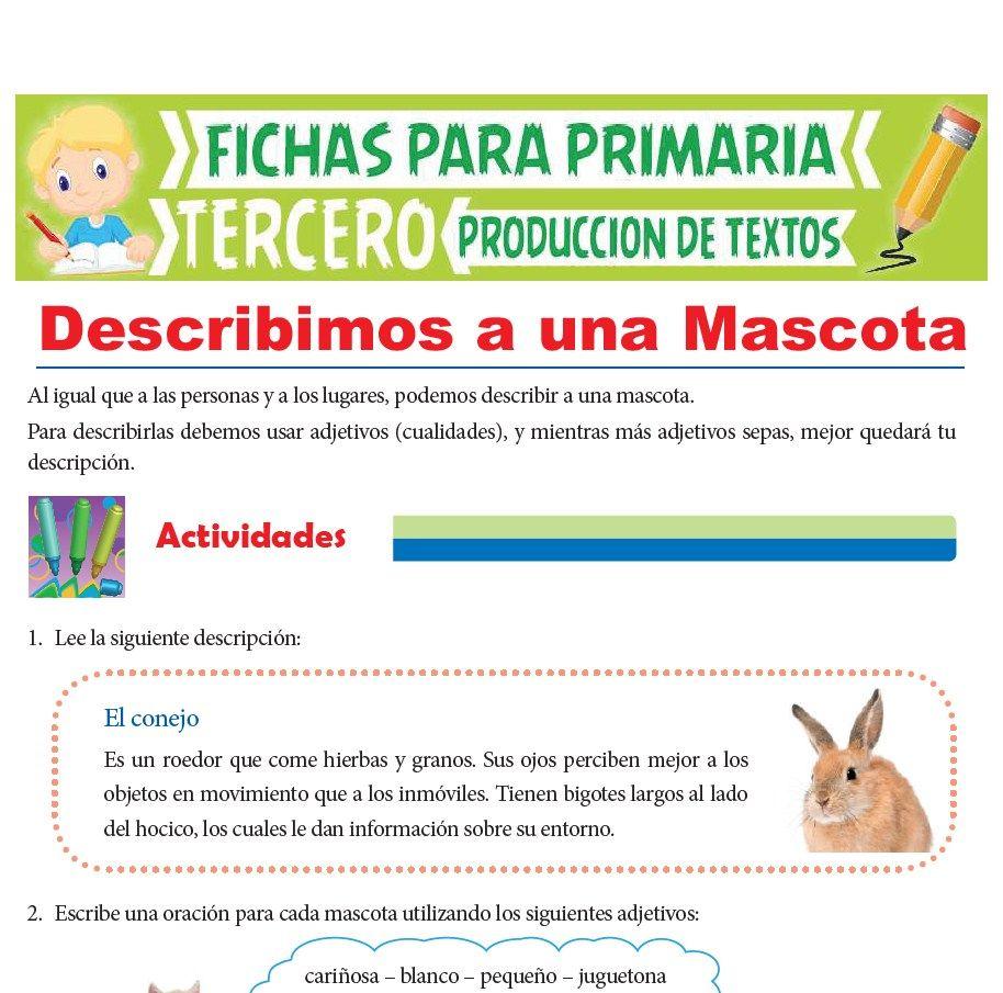 Ficha de Describimos a una Mascota para Tercer Grado de Primaria