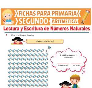 Ficha de Lectura y Escritura de Números Naturales para Segundo Grado de Primaria