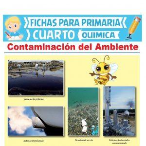 Ficha de Contaminación del Ambiente para Cuarto Grado de Primaria