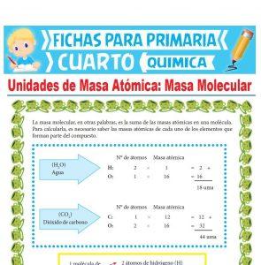 Ficha de Masa Molecular para Cuarto Grado de Primaria