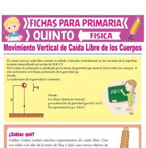 Ficha de Movimiento Vertical de Caída Libre de los Cuerpos para Quinto Grado de Primaria