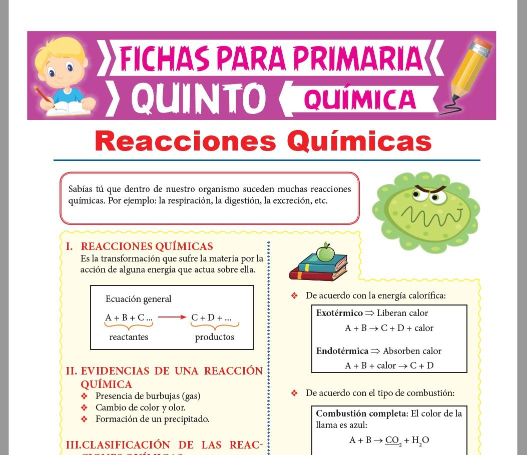 Ficha de Clasificación de las Reacciones Químicas para Quinto Grado de Primaria