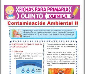 Ficha de Fenómenos Causados por la Contaminación para Quinto Grado de Primaria