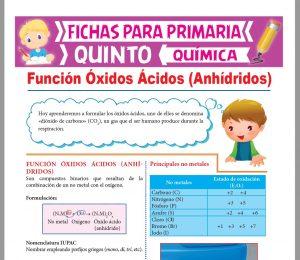 Ficha de Función Óxidos Ácidos para Quinto Grado de Primaria