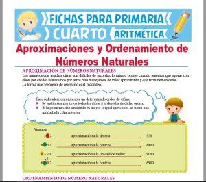 Ficha de Aproximaciones y Ordenamiento de Números Naturales para Cuarto Grado de Primaria