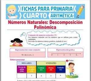Ficha de Descomposición Polinómica de Números Naturales para Cuarto Grado de Primaria