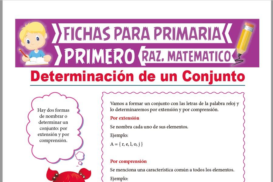 Ficha de Determinación de un Conjunto para Primer Grado de Primaria