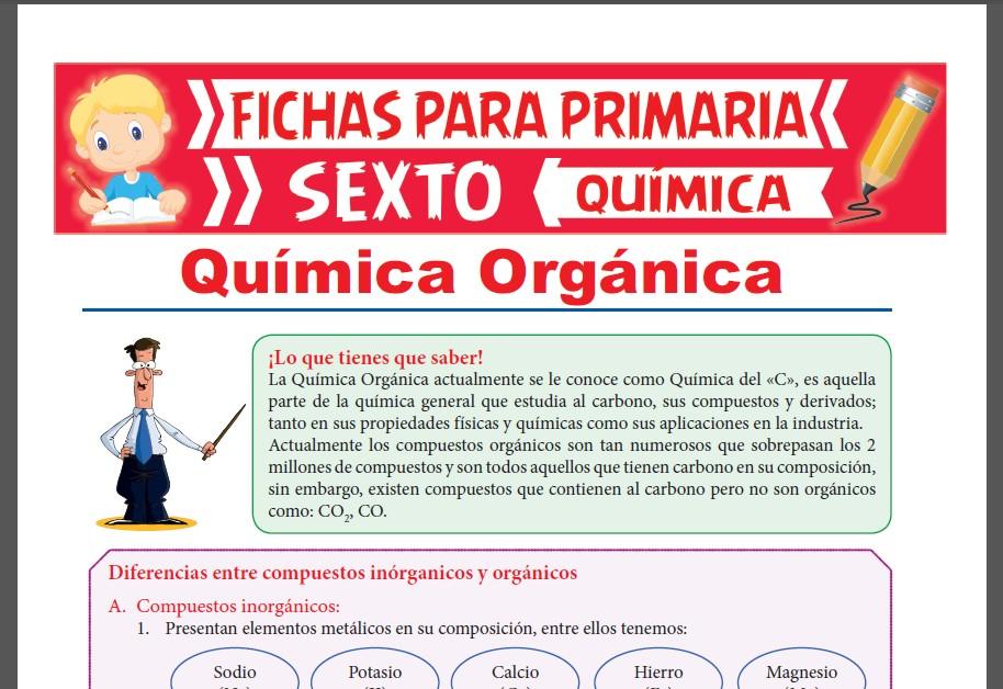 Ficha de Diferencias entre Compuestos Orgánicos e Inorgánicos para Sexto Grado de Primaria
