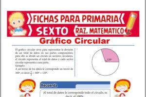Ficha de Gráficos Circulares para Sexto de Primaria