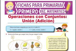 Ficha de Unión de Conjuntos para Primer Grado de Primaria