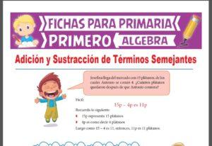 Ficha de Adición y Sustracción de Términos Semejantes para Primer Grado de Primaria